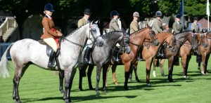 The Dublin Horse Show in Dublin weekend events